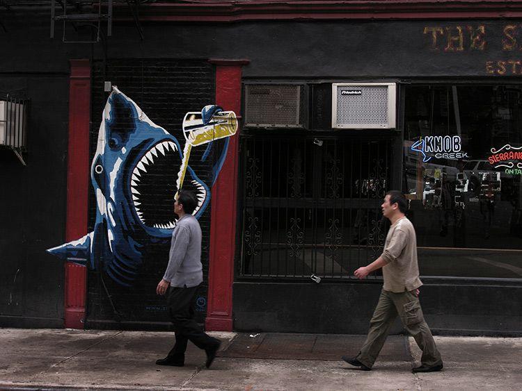 ground, sharks, New York