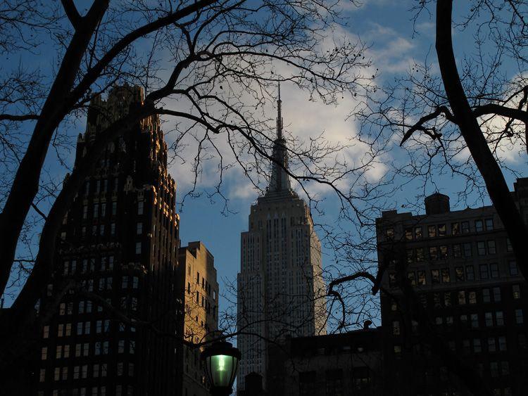 branching, view, New York
