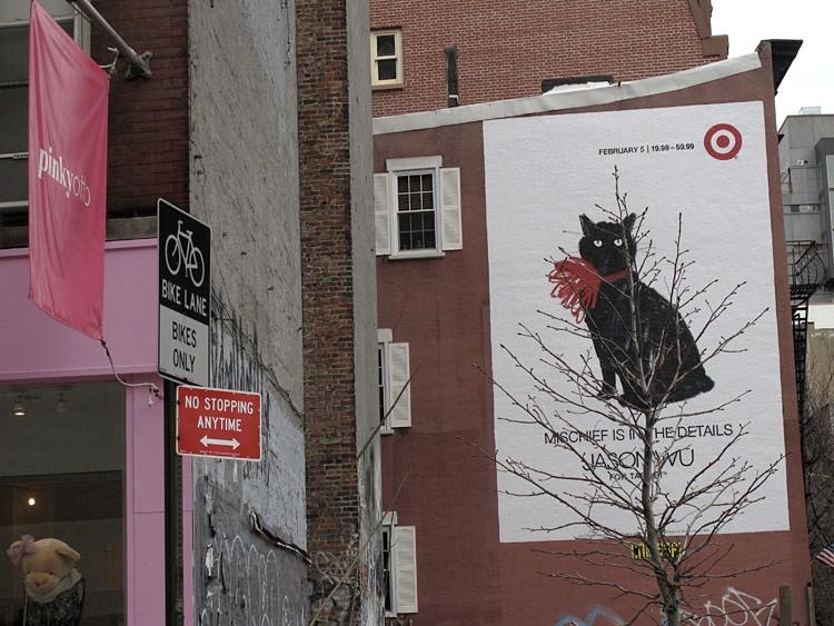 cat, target, New York