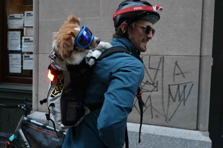 backpack, riding, New York