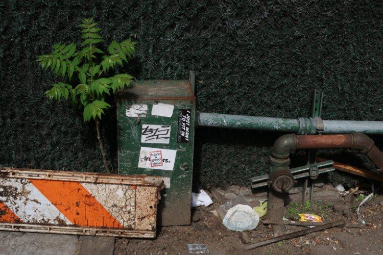 green, zone, New York